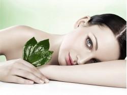CA&LE Cosmetics - Kosmetikstudio
