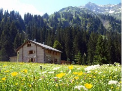 Zwergenhaus - Urlaubschalets