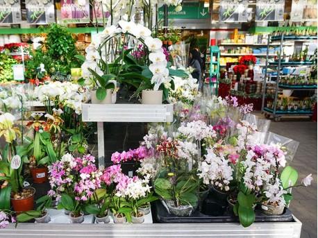 BayWa - Bau- und Gartenmarkt