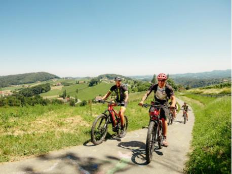 Benz E-Bike Tours